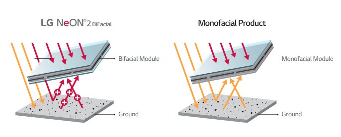 Show how LG NeON2 BiFacial modules capture energy from both sides